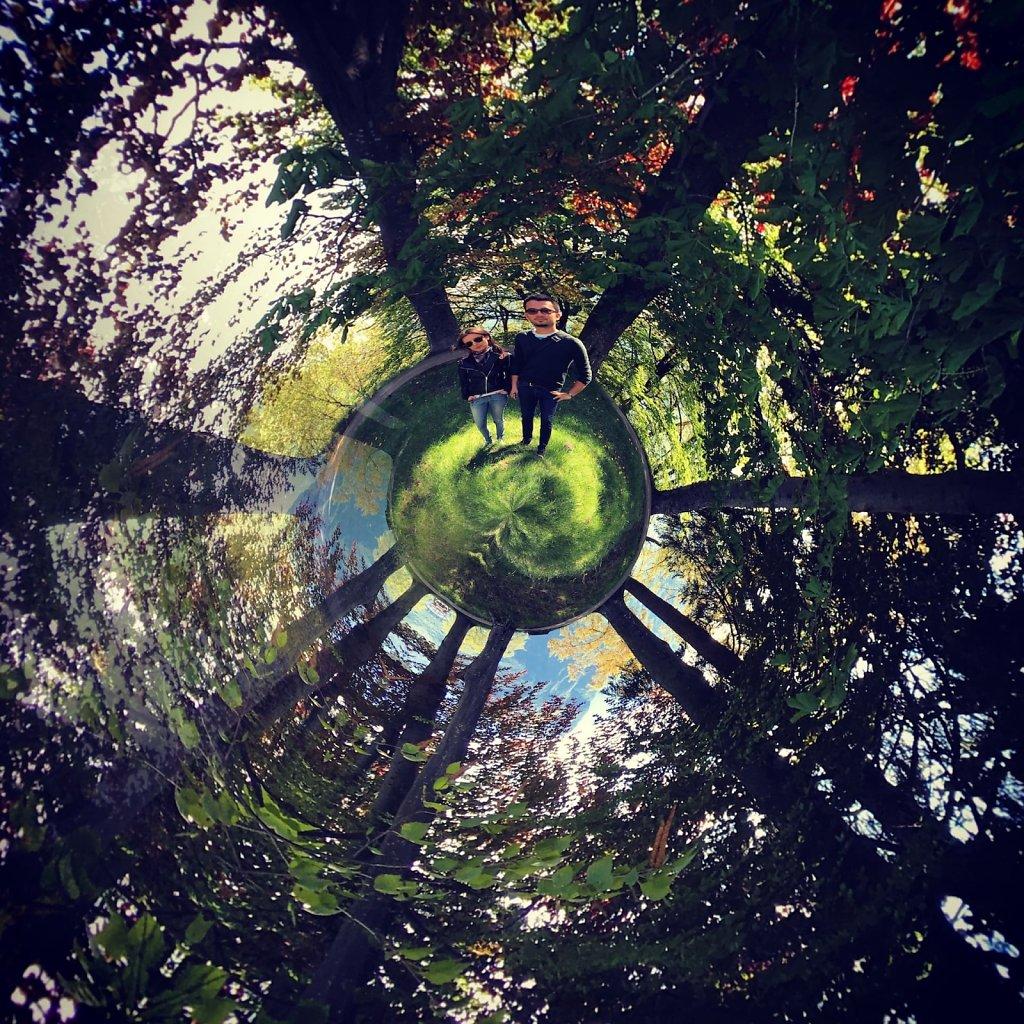 Circular forest