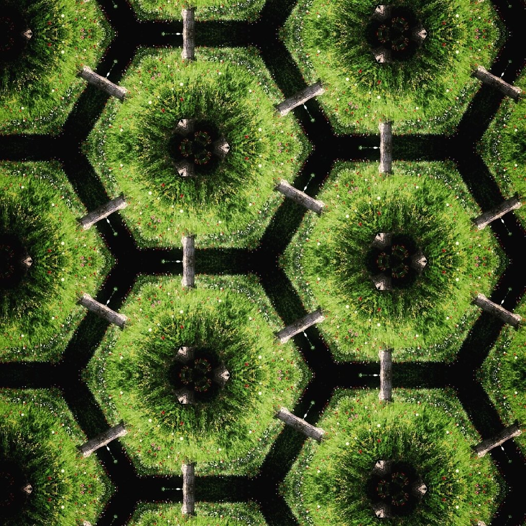 Green hexagons connected by tree trunks