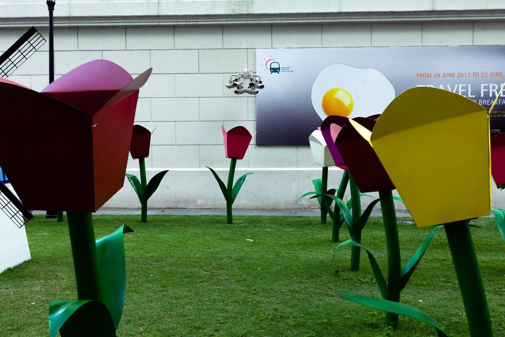Tulips under surveillance