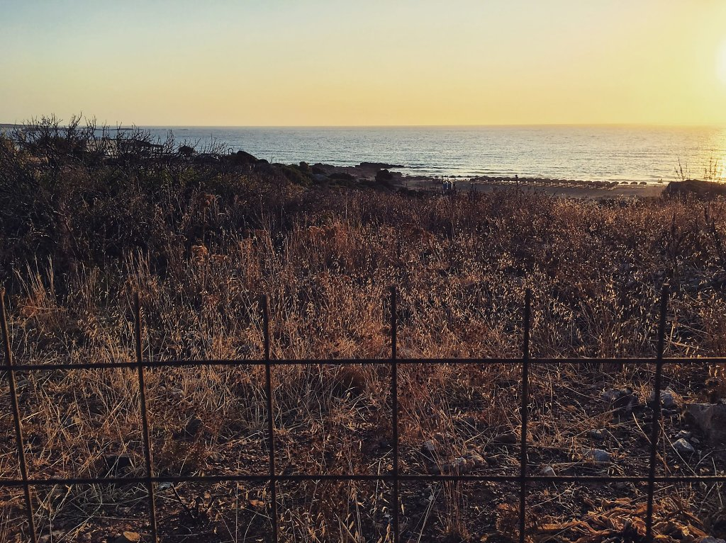 The sunset fence