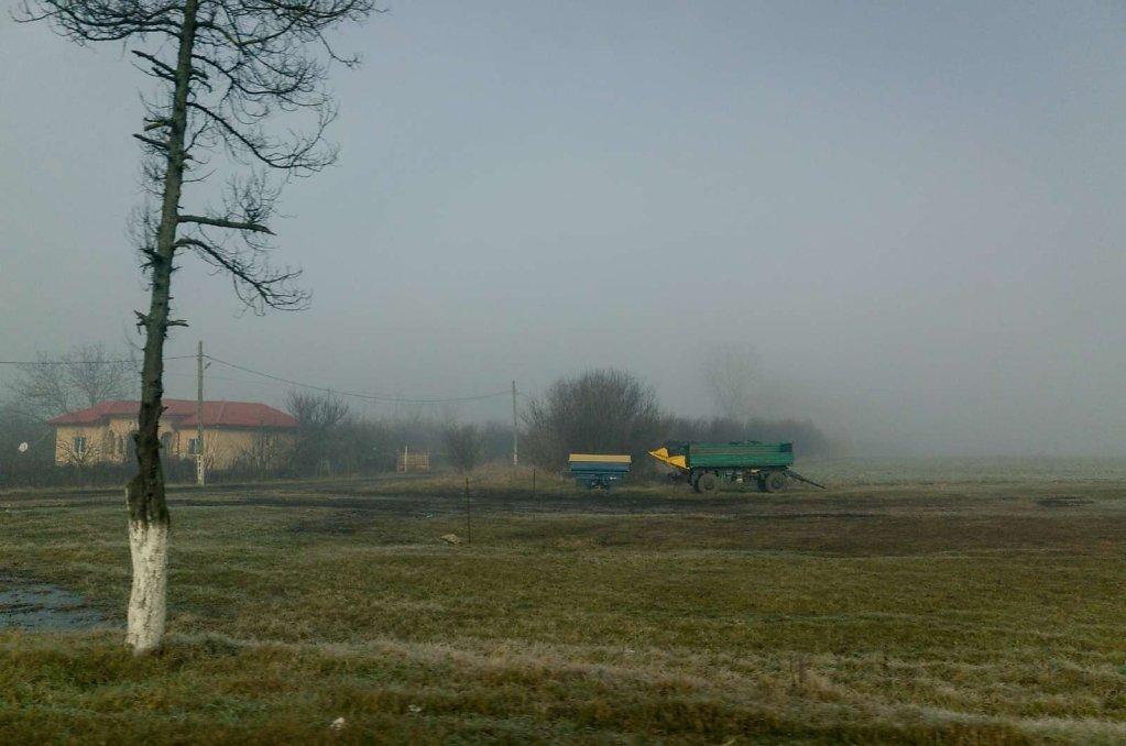 Through the haze, VI