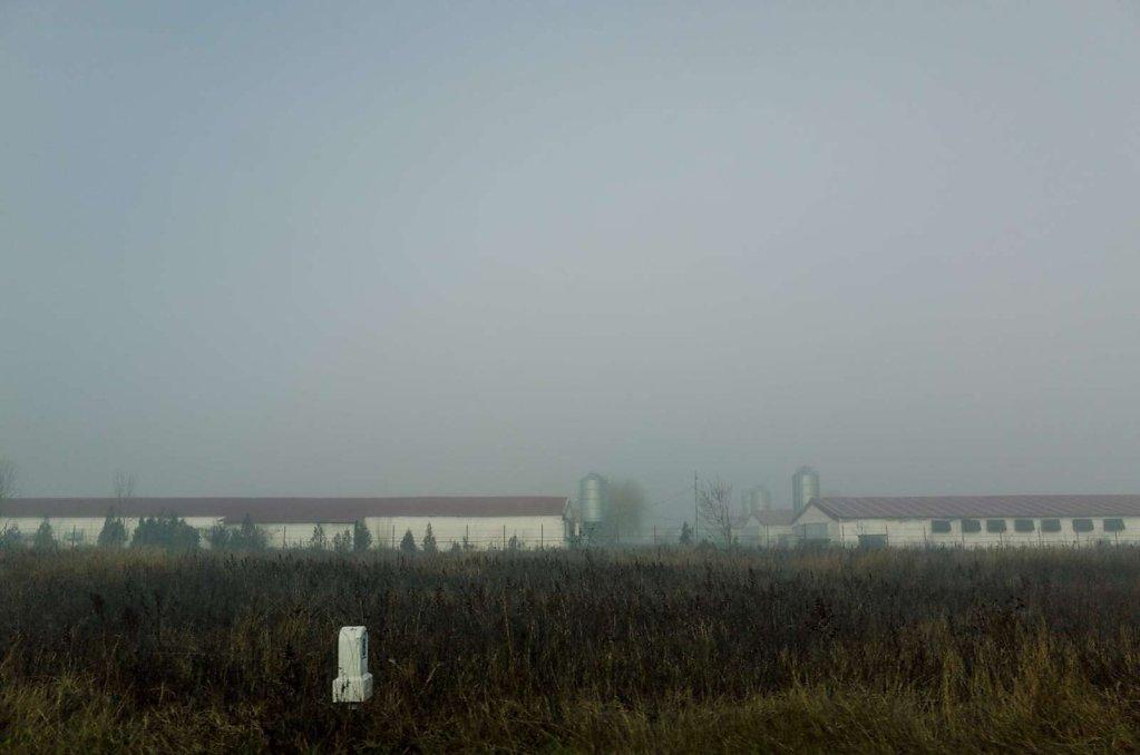Through the haze, IV